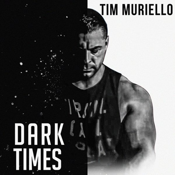 Cover art for Dark Times